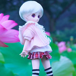 Floating the lotus in summer dream_03