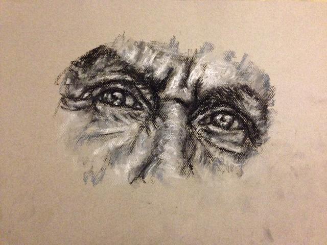 charcoal_eye_study
