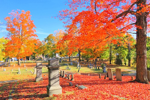 autumn trees light sky color colour fall nature landscape geotagged ma outdoors massachusetts sony cemetary newengland vivid cybershot maynard gayphotographer rx100m2 dcsrx100m2
