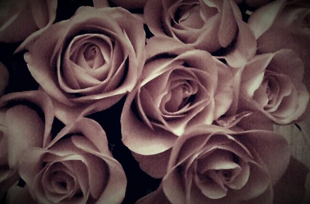 the vintage look roses......