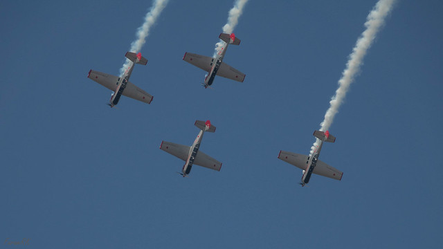Yak-52D and Yak-50's of the Yakovlevs team