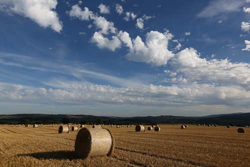 ireland light sky field clouds landscape evening scenery day cloudy harvest straw crop bales bale wicklow stubble rathdrum absolutelystunningscapes