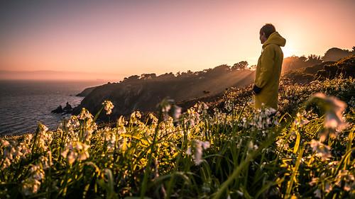 howth path portrait girl ireland sunset travel nature flowers dublin backlight outdoor light yellow cliff sea countydublin ie onsale portfolio