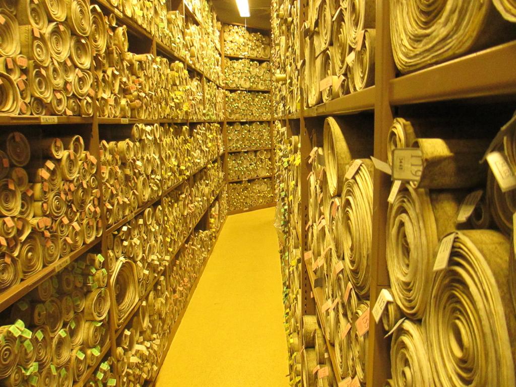 Parliamentary Archives | Matt ...