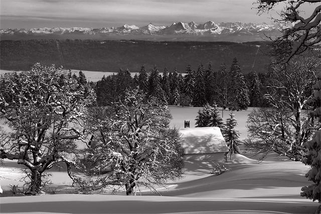 La Vue des Alpes , Canton of Neuchâtel. February 10, 2013. No. 32198.