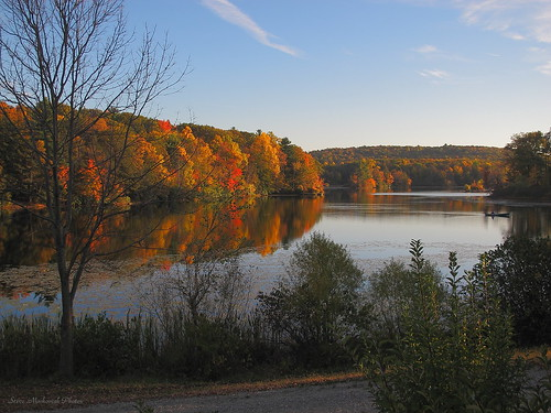 autumn trees lake mountains fall water leaves canon reflections pond fallcolors powershot foliage g12 smack53