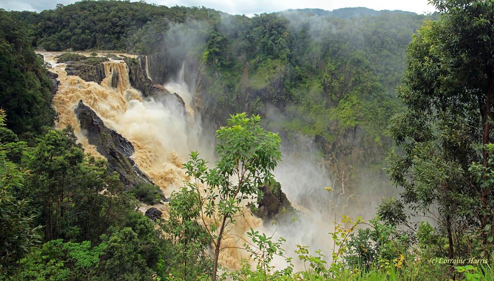 Barron Falls (Din Din), Kuranda