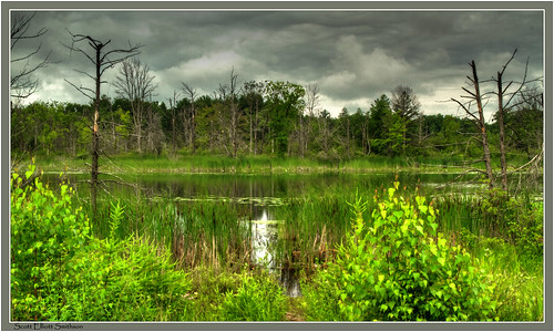 lake storm clouds mi canon scott landscape eos woods state michigan parks holly 7d wetlands waters recreation areas fenton elliott darkclouds wetland smithson waterscape sandlake michiganlakes photomatix michiganstateparks michiganstatepark michiganwoods sevenlakesstatepark michigannature michiganwetlands eos7d canoneos7d dtwpuck scottsmithson scottelliottsmithson sevenlakesstaterecreationarea dickensonlakearea