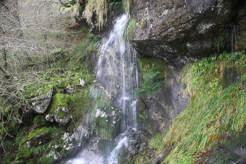 Parque Natural de Gorbeia #DePaseoConLarri #Photography 2593