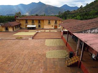 coffee plantation | Filadelfia Plantation, Antigua Guatemala… | Beth Jusino | Flickr