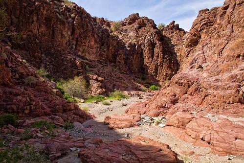 arizona landscape unitedstates desert lakehavasucity stateparks lakehavasustatepark