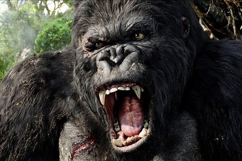 new-king-kong-film-skull-island-gets-retitled-delayed-to-2017 | by DReager100