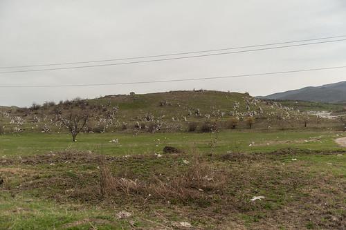 aze aserbaidschan barxudarlı qazax geo:lat=4099851210 geo:lon=4522225300 geotagged