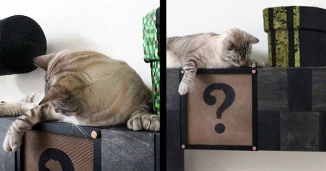 You'll Feel Nostalgic When You See What These People Just Made For Their Cats