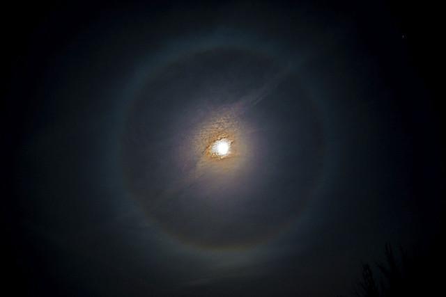 Moon Ring, Halo