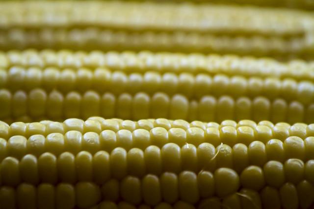 Texture #1 - Corn on the Cob