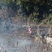 Clearing the fields - Limpiando el campo de siembra; camino entre San Juan Cancuc y Oxchuc, Chiapas, Mexico por Lon&Queta