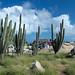 Aruba – u kaple Alto Vista, foto: Daniel Linnert