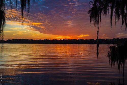 centralflorida deland florida lake water sunset reflection spanishmoss sonyphotography sony a7 sonya7