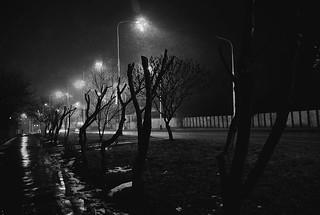 Night wandering   by divozienka89