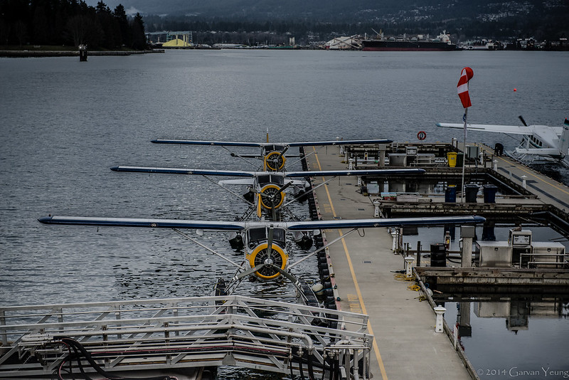 Coal Harbor Planes