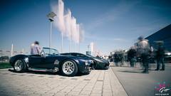 Cobra & Aventador