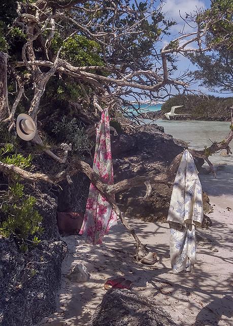Gone swimming, Bermuda