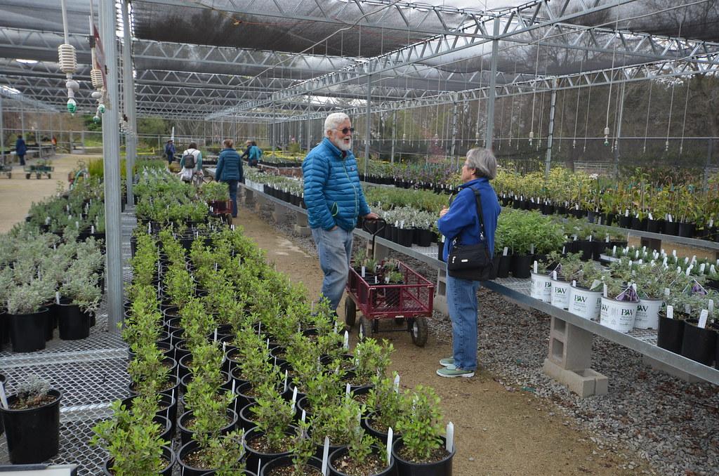 Volunteer and Upper-Level Member Plant Sale
