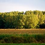 zo, 18/08/2013 - 20:12 - Dakota-IMG_2236