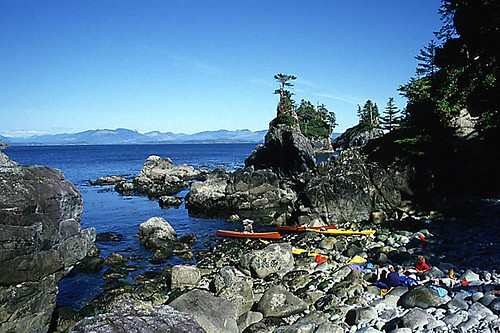 Austin Island, Broken Group Islands, Barkley Sound, Pacific Rim National Park, Vancouver Island, British Columbia