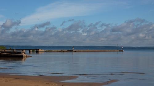 seagulls lake clouds canon 50mm sweden vänern waterreflections summermorning nordkroken glasseyesview