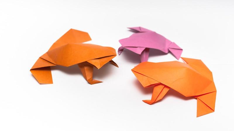 วิธีการพับกระดาษเป็นรูปกบสไตล์โคลับเบี้ยน (Origami Frog) 005