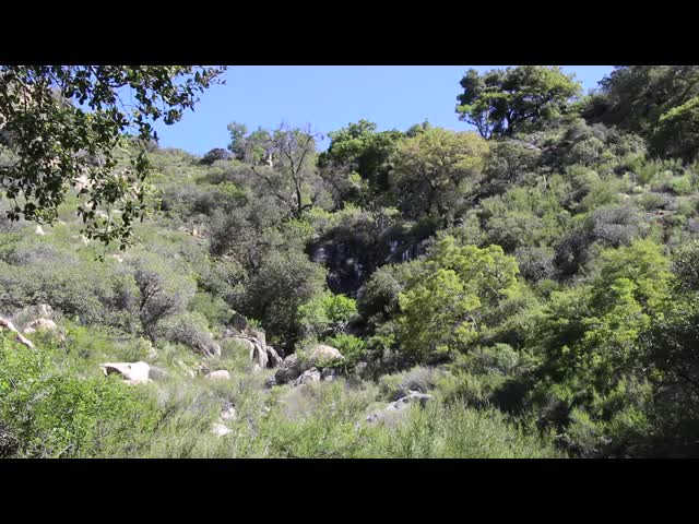 054 Video of a small waterfall in Hauser Canyon