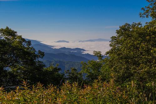 tennessee northcarolina erwin beautyspot appalachiantrail pisgahnationalforest cherokeenationalforest roanmountain netbros internetbrothers