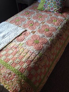 My daughters baby quilt converted into a twin size.  Love Fresh Cut!!!!!