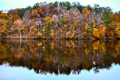 Lake Johnson Leaves in the Fall