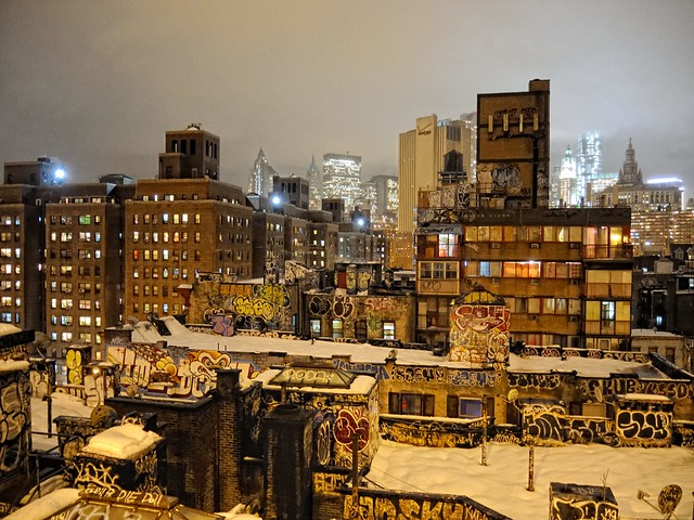 NYC Winter Scenes with Pax