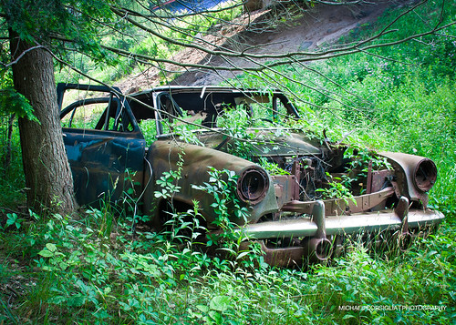 auto summer urban usa hot sexy abandoned beautiful fashion race america forest landscape amazing vines nikon rust automobile track artistic pennsylvania muscle wildlife awesome engine machine fast automotive eerie forgotten american rusted aged stance flowersplants derilect pennsylvaina d7100