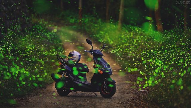 夏夜綠光精靈