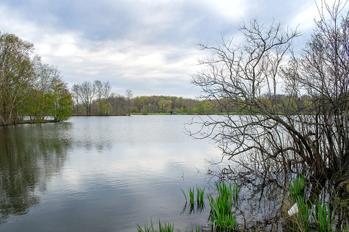 corning lake water spring green tree house shed clouds overcast trees nikon d3300 reflections landscape geauga ohio cleveland arboretum holden earlyspring