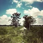 Rural South #3