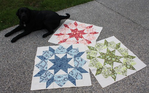 Kelsey's Swoon Quilt - In Progress   by Everyday Fray