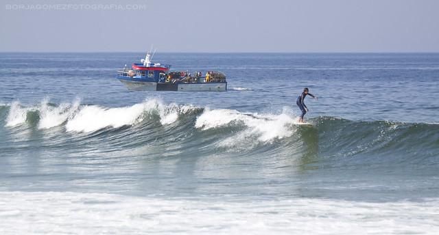 Surfing y Pesca