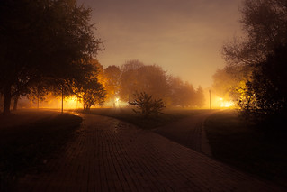 Foggy Park | by Kontramax