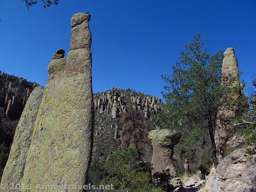 Rock formations along the Ed Riggs Trail in Chiricahua National Monument, Arizona