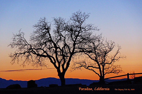 Paradise, California Skyway Hiway | by psbell2