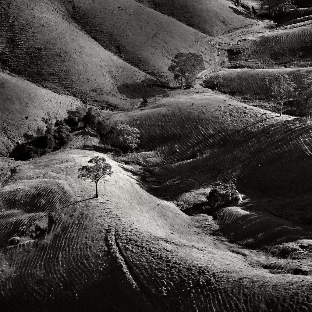 Image: Hills of the Hunter