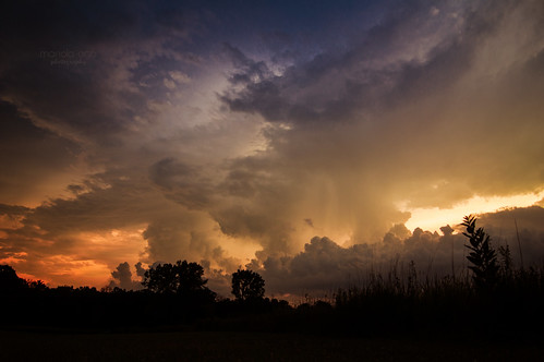summer meadow evening sunset trees grass silhouettes sky stormyweather sun sunlight storm thunderstorm clouds nature thegalaxy cloudsstormssunsetssunrises