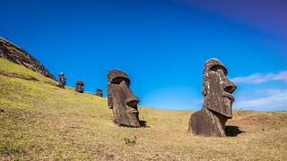 Moai at the Quarry