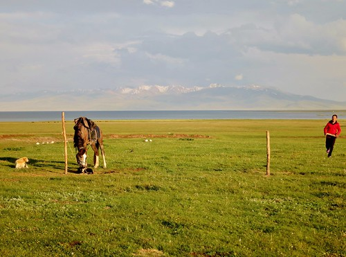 horse dog lake animal riding kyrgyzstan horseback songkol